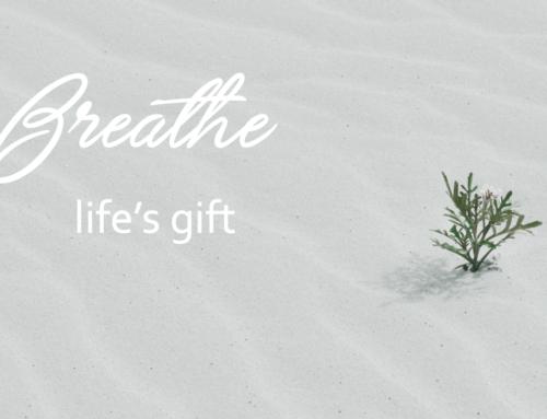 BREATHE – life's gift  pt1