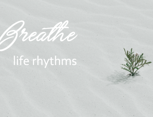 BREATHE – life rhythms  (part three)